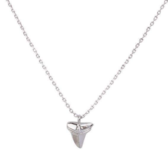 Collier Dent de requin argentée - Bijoux & Collier de marque 7bis